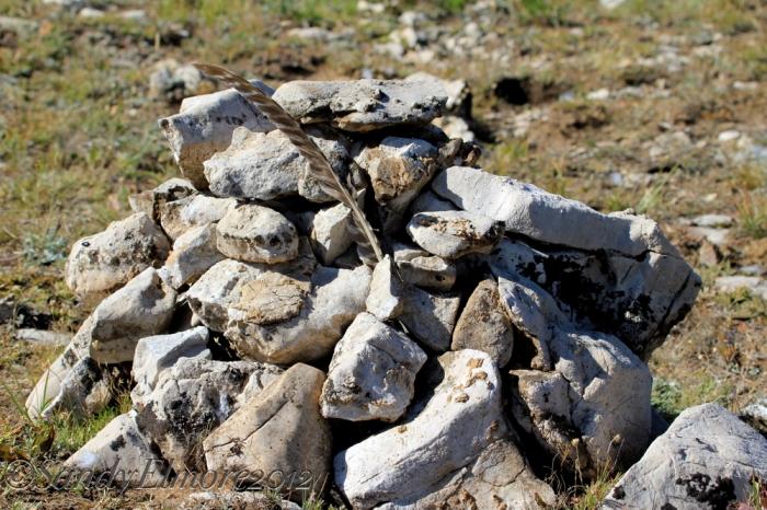 lakota-memorial